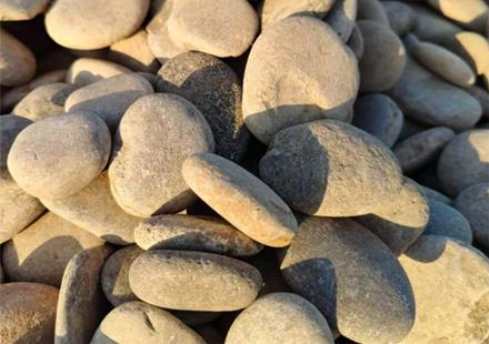 大量优质鹅卵石景观石现货供应