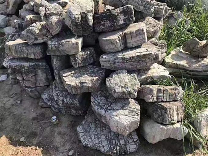 龟纹石出售