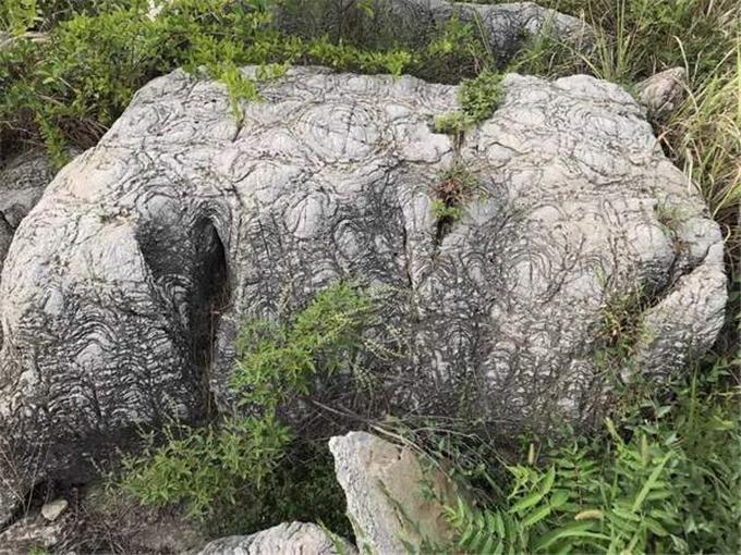 龟纹石假山石